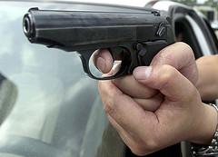 Gun laws fail safety test: Greens