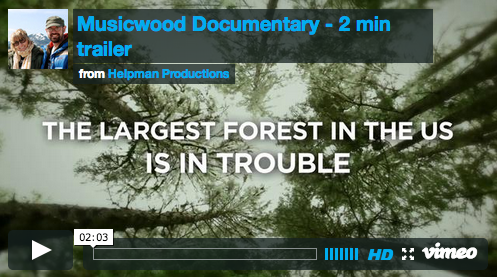 Earth Day film review: 'Musicwood'