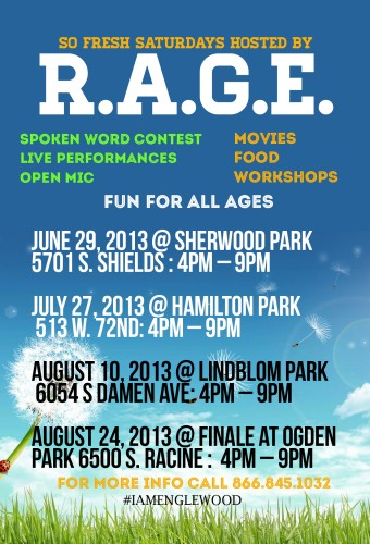 An Alternative to the Violence in Englewood….Peace in the Parks!